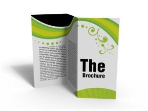 brochure03
